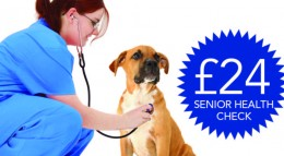 Senior Health Check advert picture